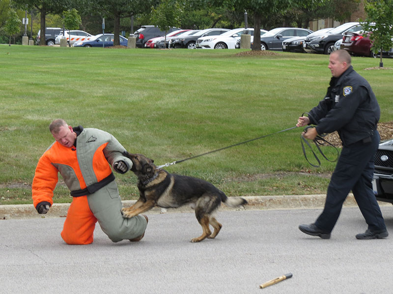 The always-popular K-9 demonstration