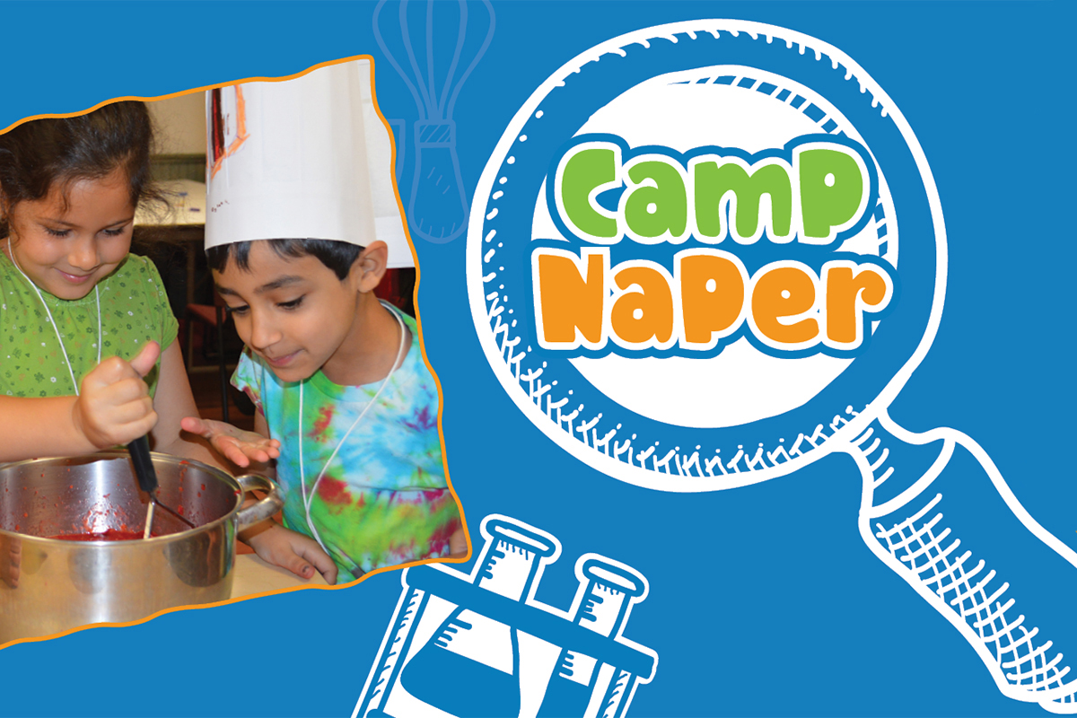 Camp Naper offers 12 acres of epic experiences!